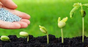 هيئة الاستثمار السورية توافق على تشميل مشروع لتصنيع الأسمدة الفوسفاتية.